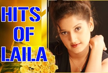 Hits Of Laila Super Hit Famous | Audio Jukebox
