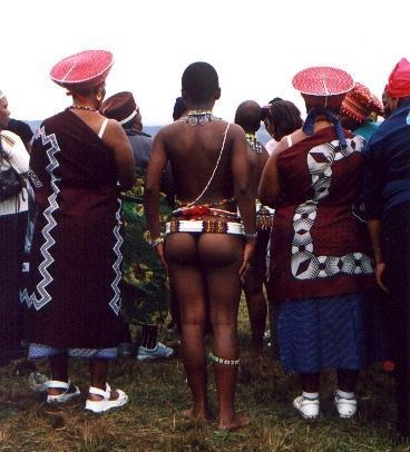 african booty zulu reed dance