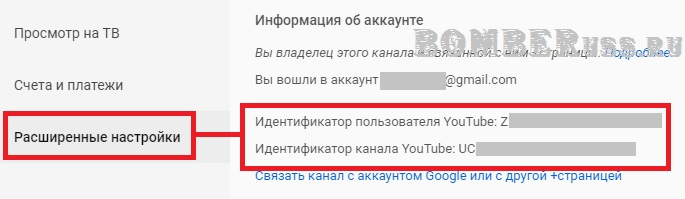 узнать Youtube ID