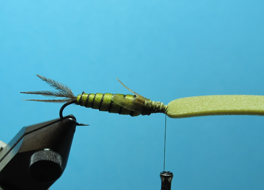 Dragonfly nymph jaws
