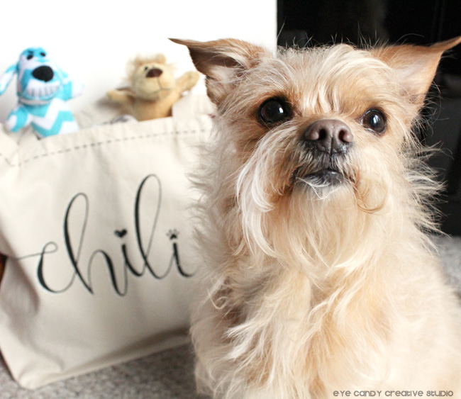 chili, hand lettering, tote bag craft, DIY doggie bag, puppy love