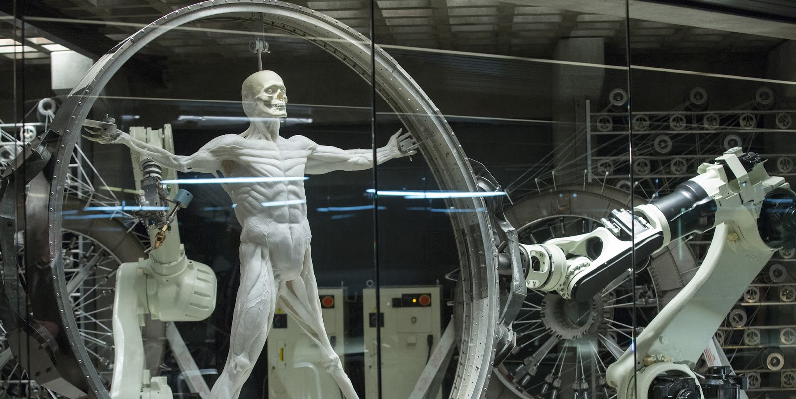 Robot from Westworld