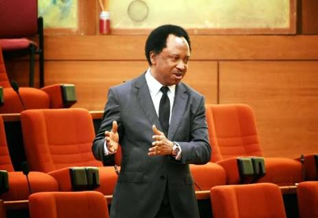 Angry Senators Plot Against Shehu Sani For Exposing Their Monthly Allowance of N13.5Million