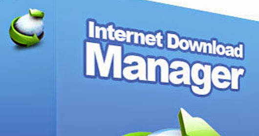 Internet Download Manager 6.29 Build 02 Terbaru