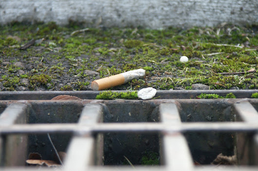 Photo Story: Cigarette butts in Corvallis