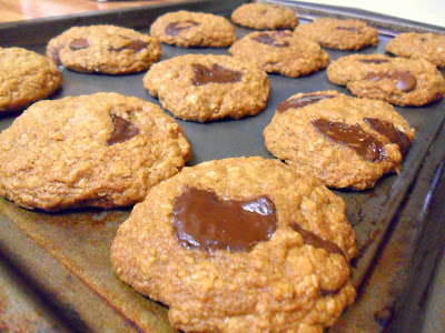 chewy chocolate chunk coconut oatmeal cookies (made with coconut oil)
