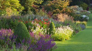 Jardines en verano. RHS Garden Harlow Carr