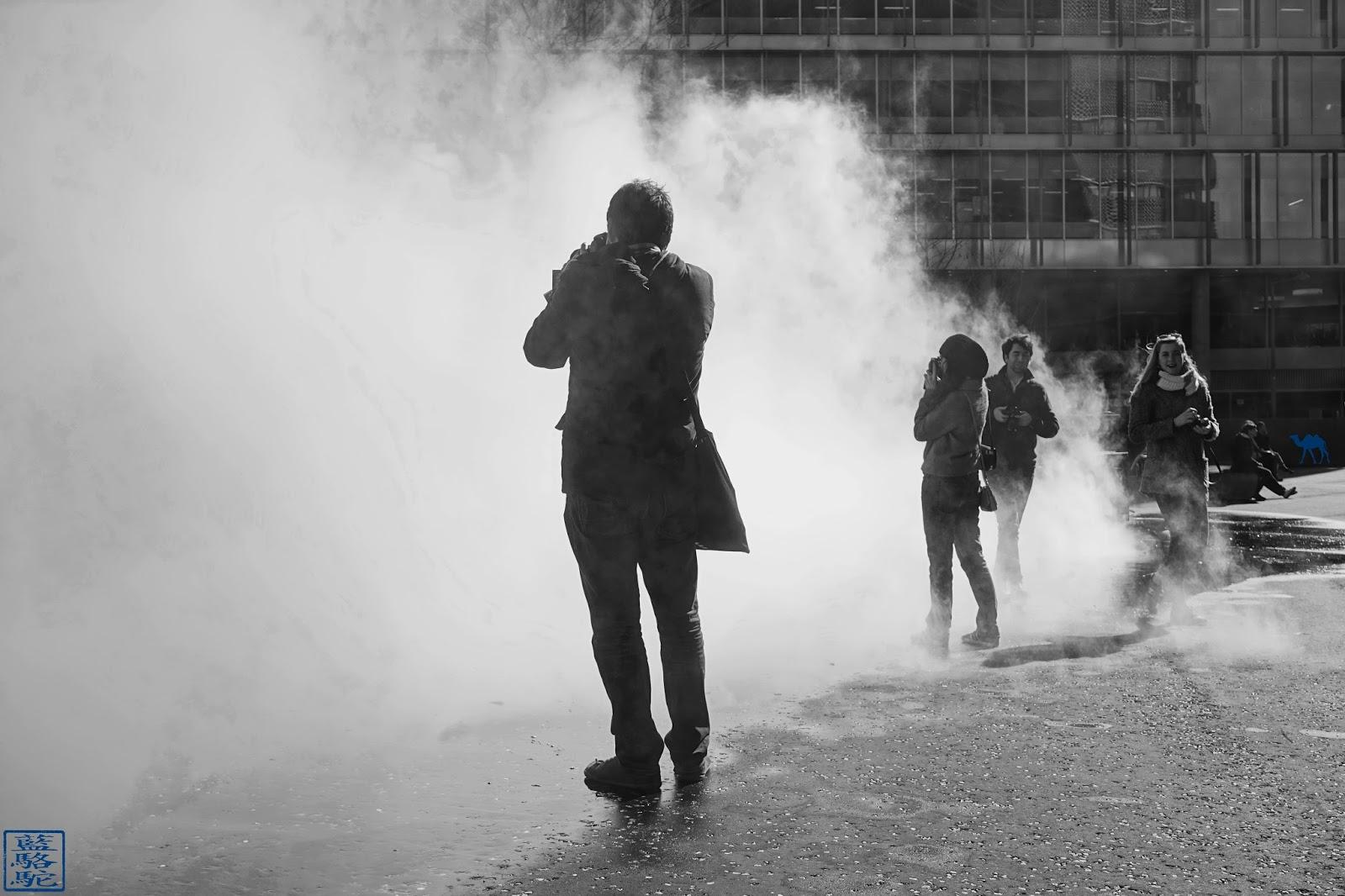 Le Chameau Bleu - Photographes dans la brume