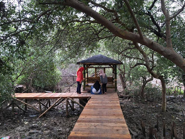 Edu-Ekowisata Mangrove Sukorejo Gresik