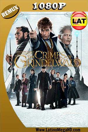 Animales Fantásticos: Los Crímenes de Grindelwald (2018) Latino HD BDRemux 1080P - 2018