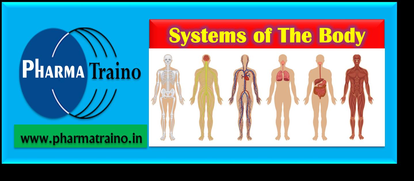 Systems Of The Body Pharma Traino