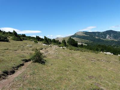 La crête frontière dans les Albères