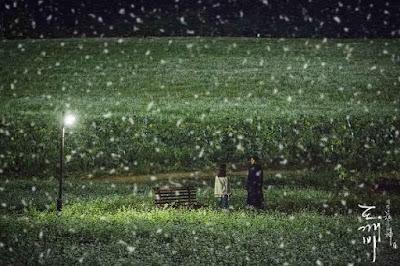 Borinara 보라나라 학원농장 green barley buckwheat flower Ji Eun tak Kim shin