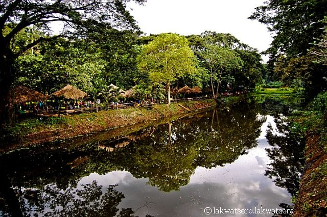 La mesa eco park website the bucket list la mesa ecopark - La mesa eco park swimming pool photos ...