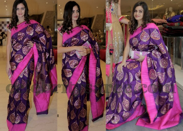 Model in Neerus Bridal Saree - Saree Blouse Patterns