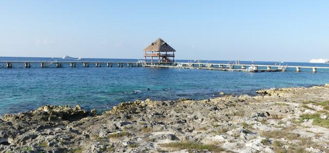 Chankanaab - Platz für Delfine und Manatees