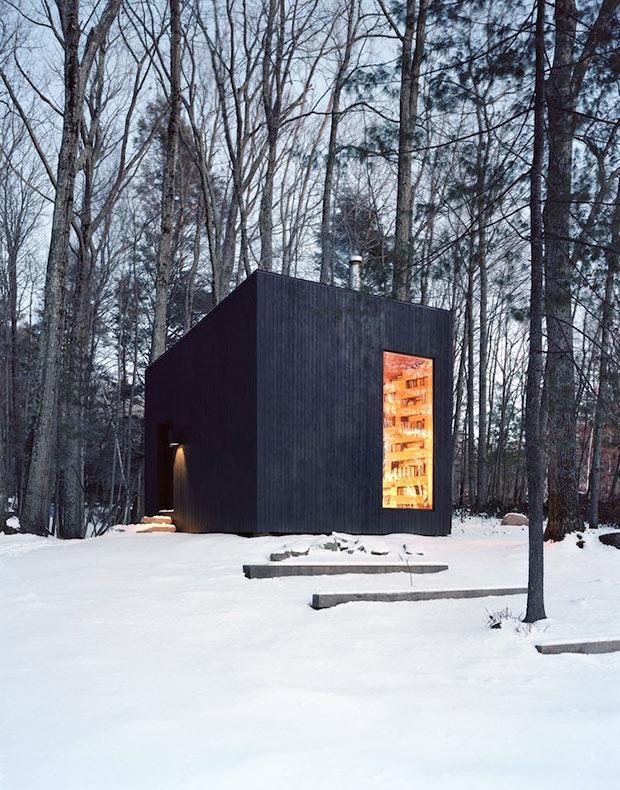 Biblioteca secreta oculta en el bosque es el sueño hecho realidad de todo bibliófilo