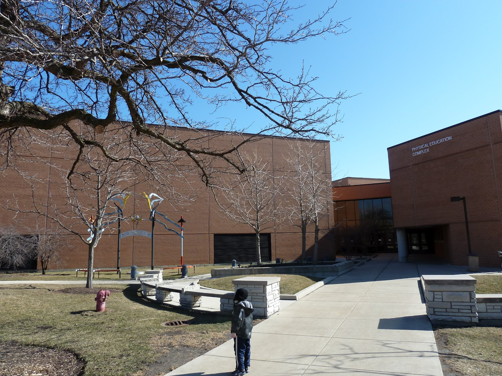 The chicago real estate local fitness kids swimming at - Northeastern university swimming pool ...
