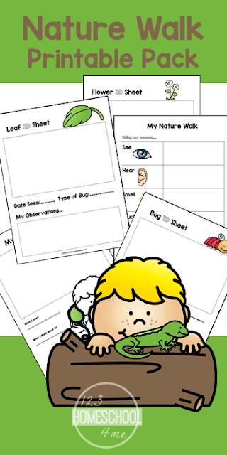 nature-walk-worksheets-kids-summer-science