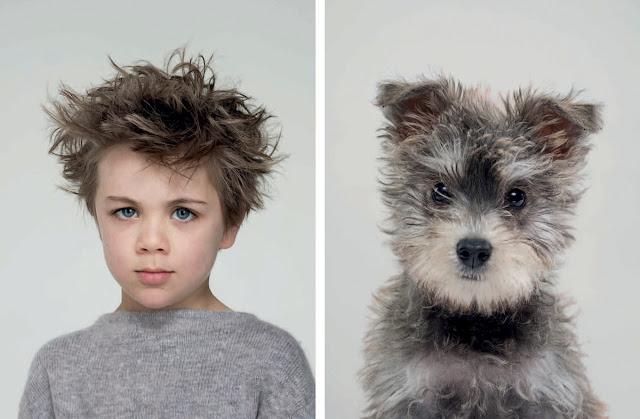 Similitudes innegables de los perros y sus amos