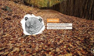 Το «Μυστήριο της μικρής αρκούδας» καλούνται να λύσουν μαθητές