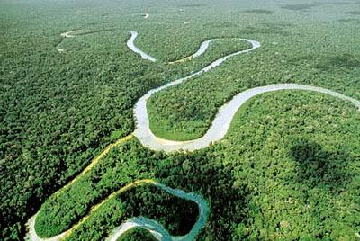 Vista aérea del río y la selva del Amazonas, donde se desarrolla la película Aguirre, la cólera de Dios. Tecnoculturas.com