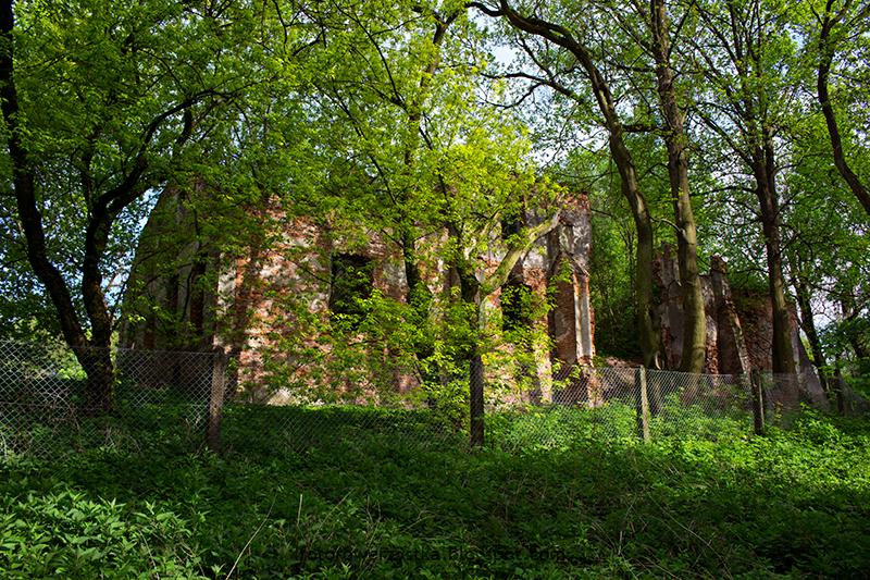 Zasów,podkarpacie,ruiny,dwór,opuszczone,park dworski