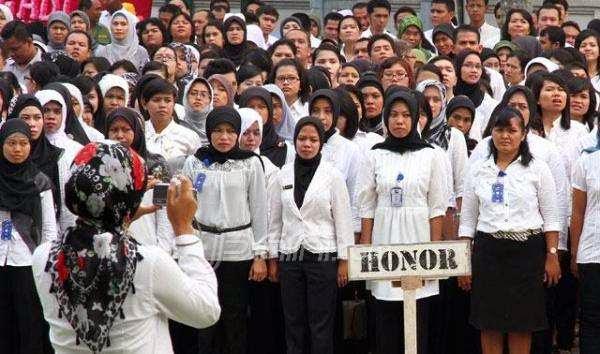 Image result for honorer pemkot bengkulu