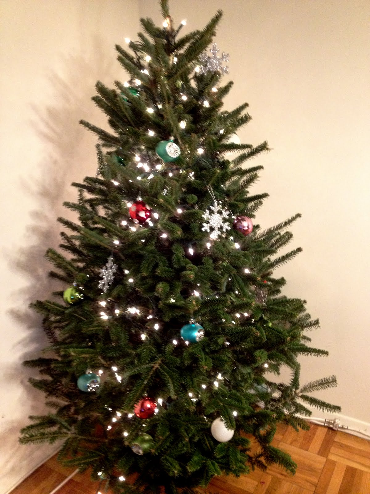 Cheap Christmas Trees Real