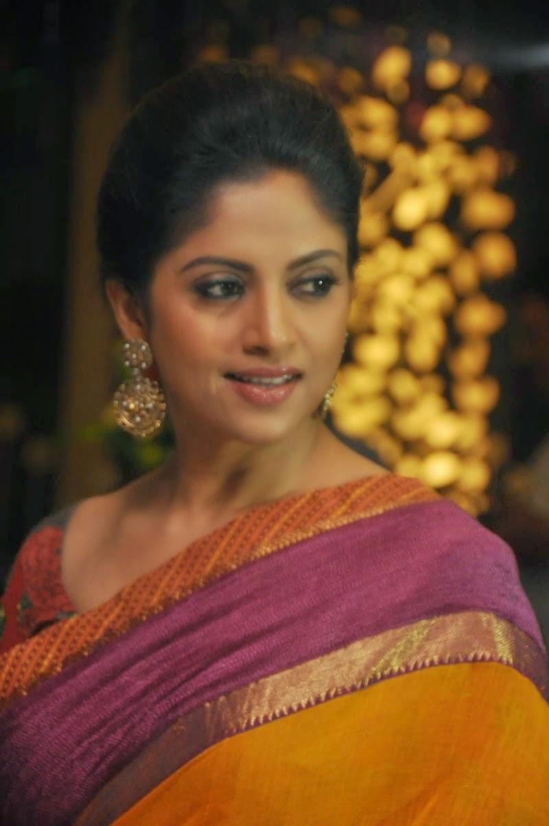 Telugu Actress Nadhiya Latest Saree Photos - Hd Latest -1844
