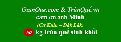 Trùn quế huyện Cư Kuin