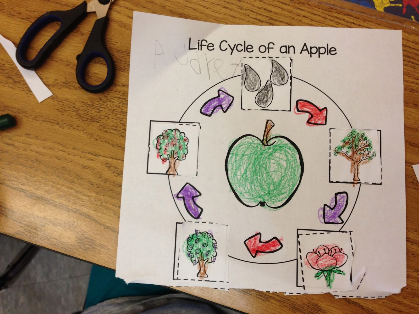 Time 4 Kindergarten Apple Time