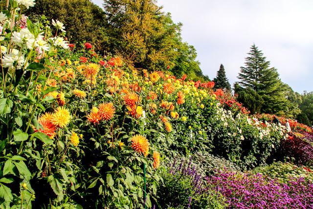 Blumengärten Insel Mainau, Bodensee