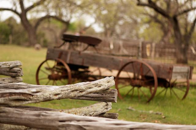 Texas Hill Country Garden Ideas Photograph