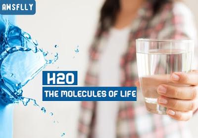 H2O the molecules of life