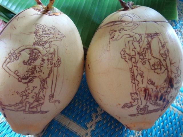 kelapa-memitu
