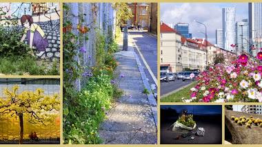 Verde en la ciudad. IGPOTY Greening The City
