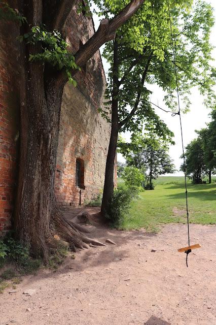 drzewo przy domie