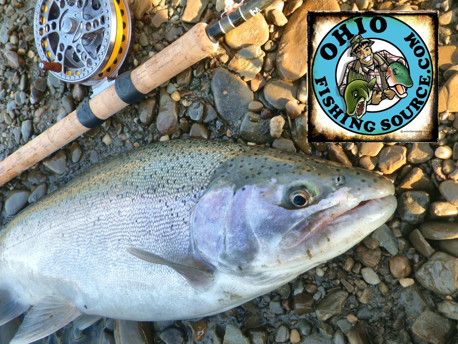 Ohio Fishing Source  Winter Steelhead