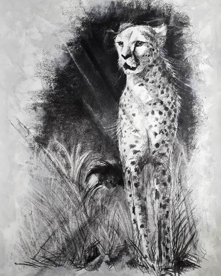 10-Cheetah-Natalya-Bassani-www-designstack-co