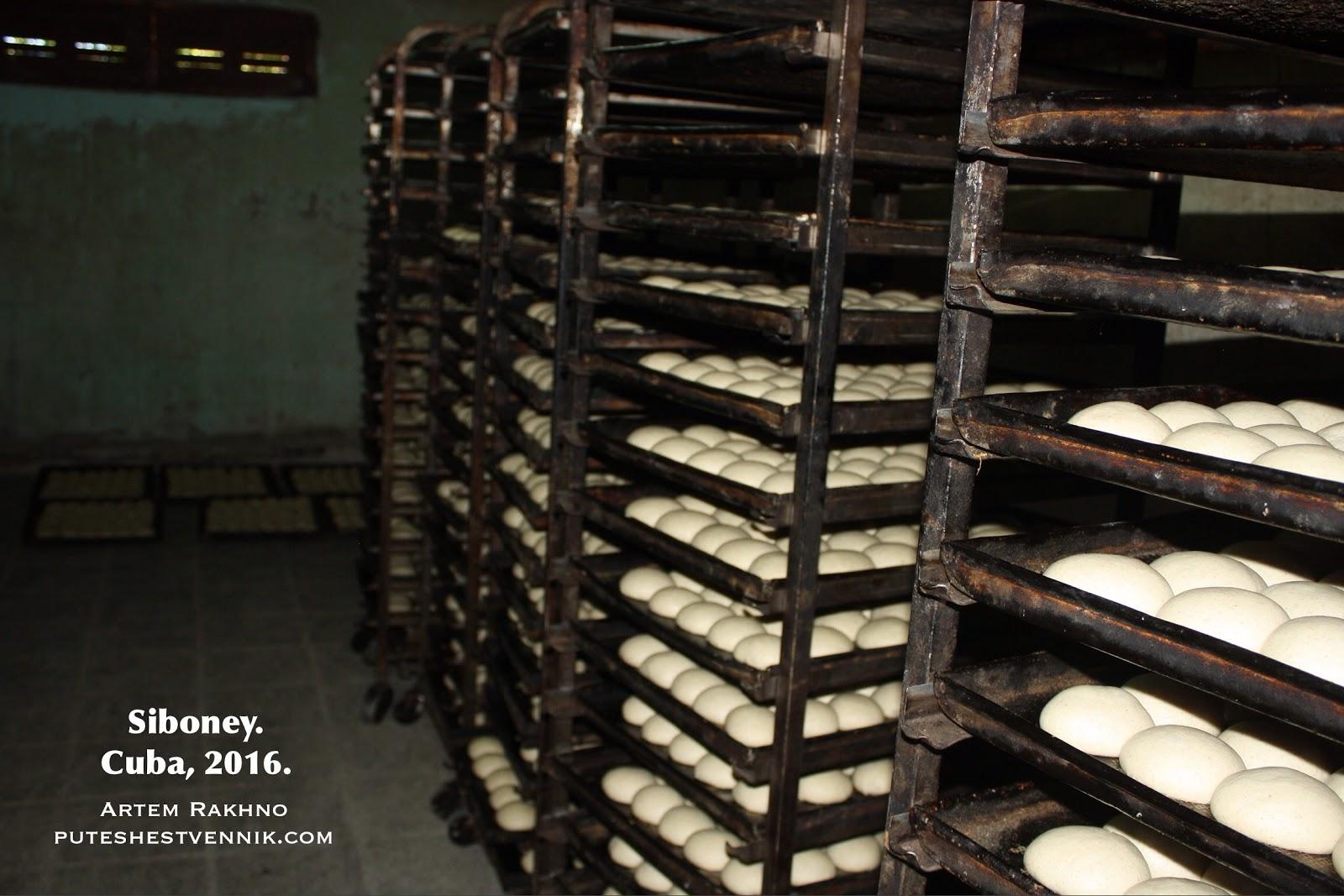 Сырой хлеб перед отправкой в печь