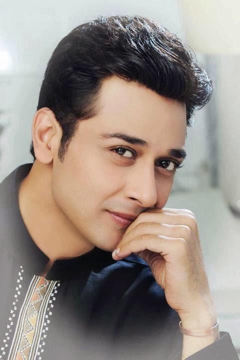 Pakistani Desi Boys Blog: February 2014