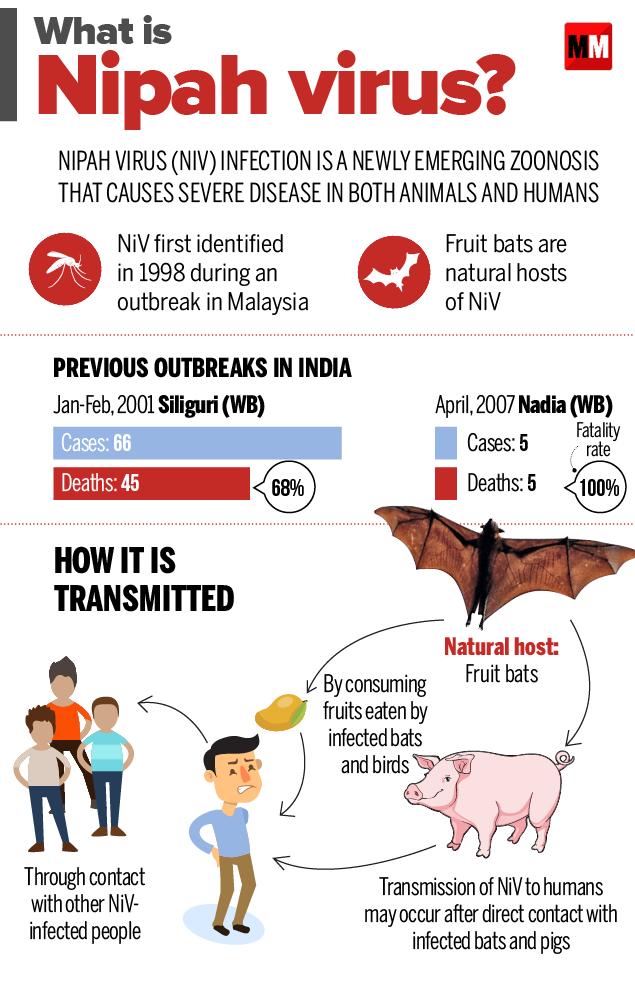Nipah virus in Kerala ~ India GK, Current Affairs 2019