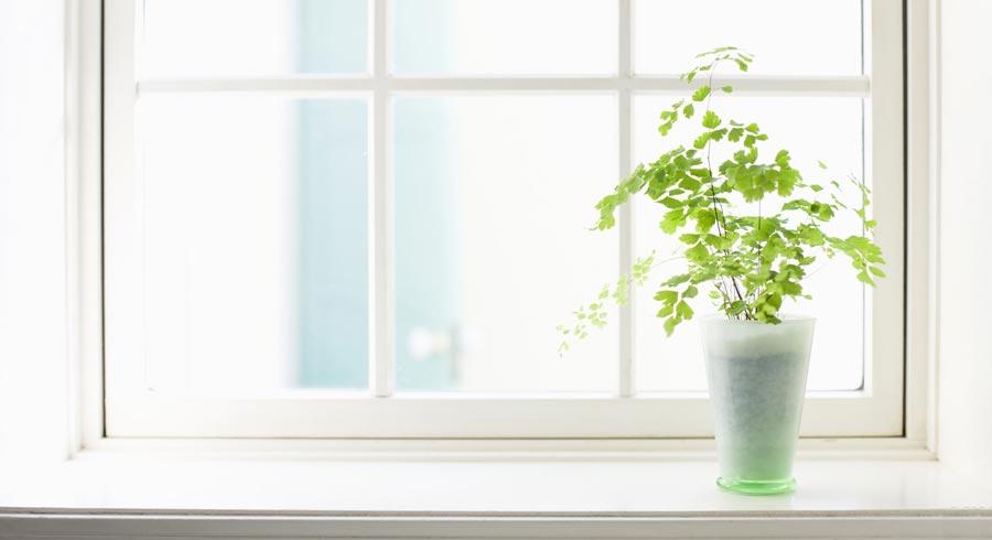 Las 3 reglas de oro para tu casa, habitación, salud y para tu vida