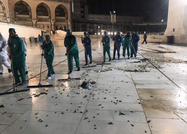 Kawanan Besar Belalang Hitam 'Serbu' Masjidil Haram Mekkah