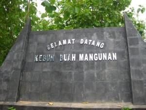 Kebun Buah Mangunan Yogyakarta - Berdiri Diantara Langit dan Bumi