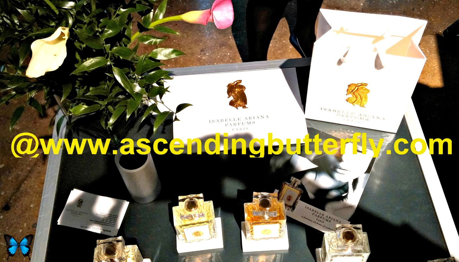 Isabelle Ariana Parfums Paris display at Elements Showcase