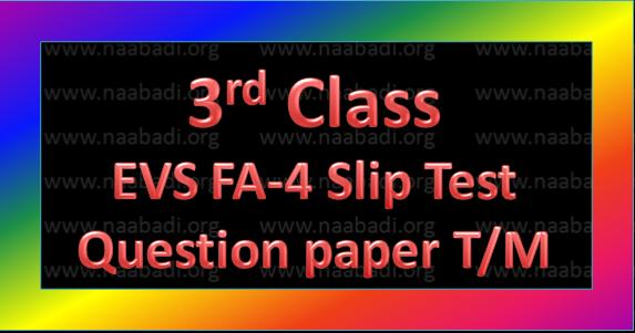 FA-4 3rd Class EVS Slip Test Question Paper T/M