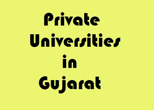best private universities in gujarat