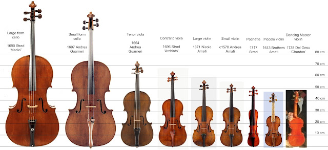david of santa barbara violin maker david beard a range of sizes. Black Bedroom Furniture Sets. Home Design Ideas